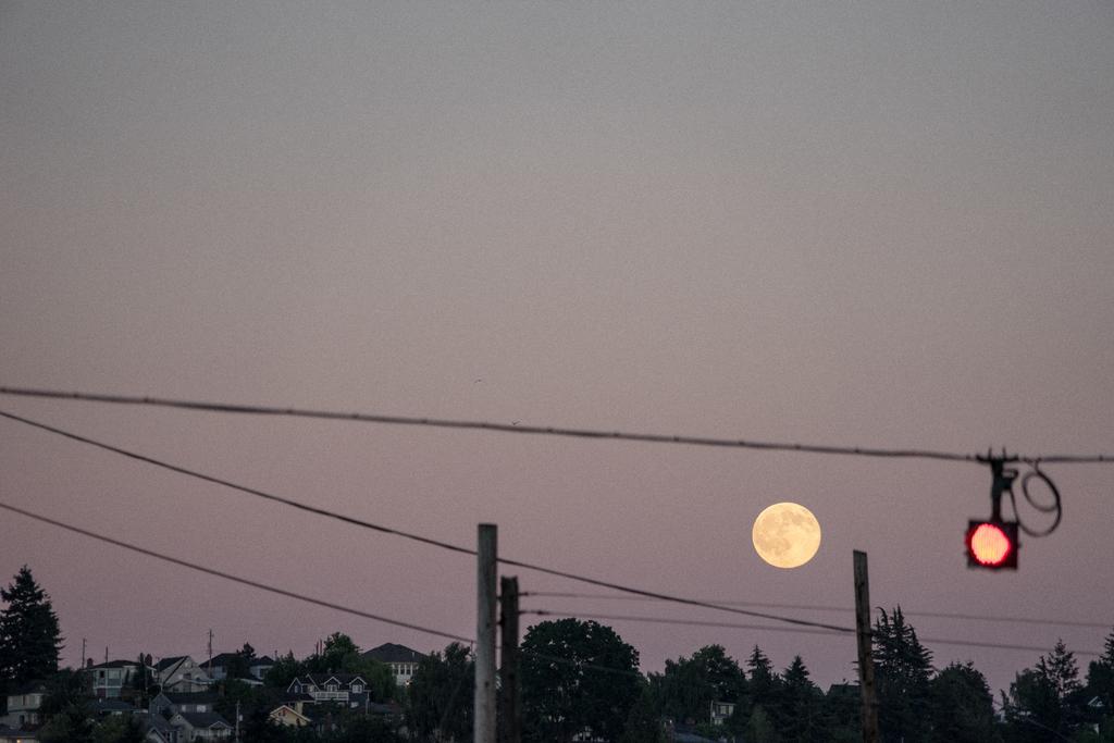 The Rising Moon